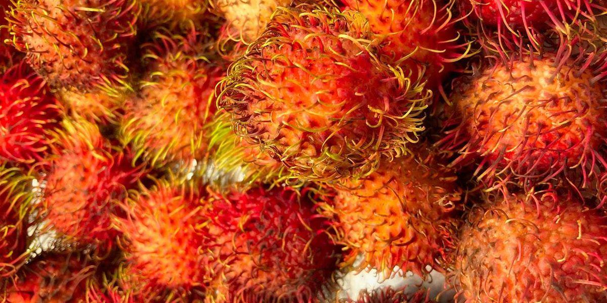 KVÍZ: Mik ezek az egzotikus gyümölcsök? - Drive Magazine